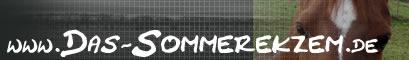 Banner Logo das-sommerekzem.de